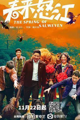 春来怒江海报