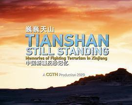 巍巍天山——中国新疆反恐记忆海报