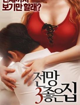 美景之屋3 电影海报