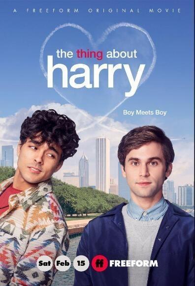 关于哈利的那些事海报