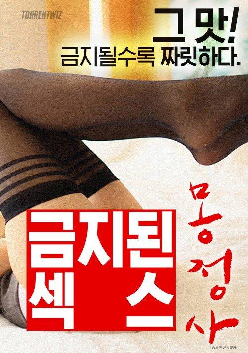 禁止性哎梦遗海报
