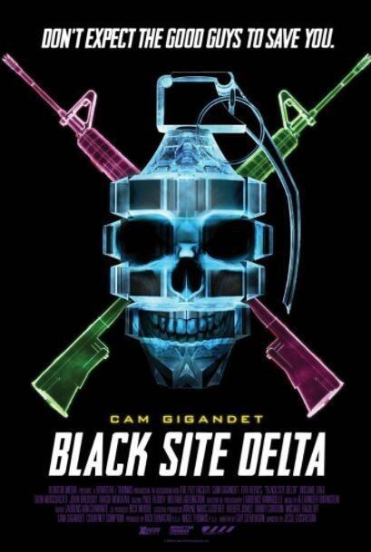 黑网三角洲海报
