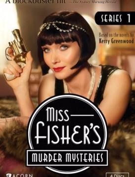 费雪小姐探案集 第一季海报