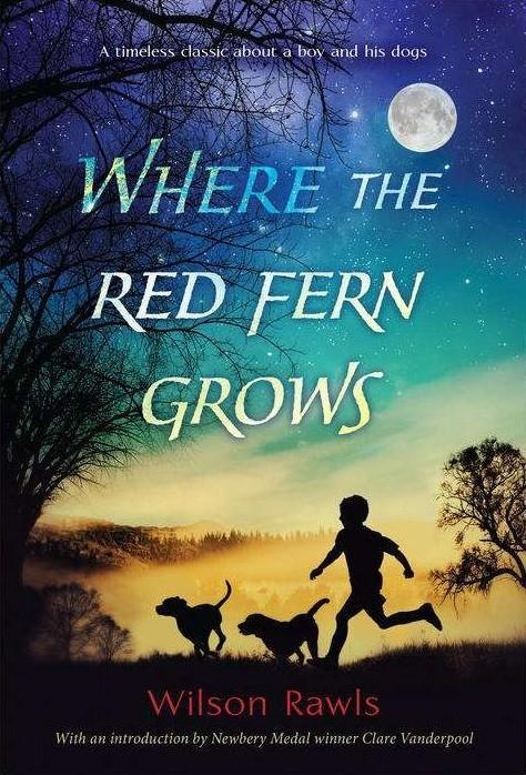 红色羊齿草的故乡海报