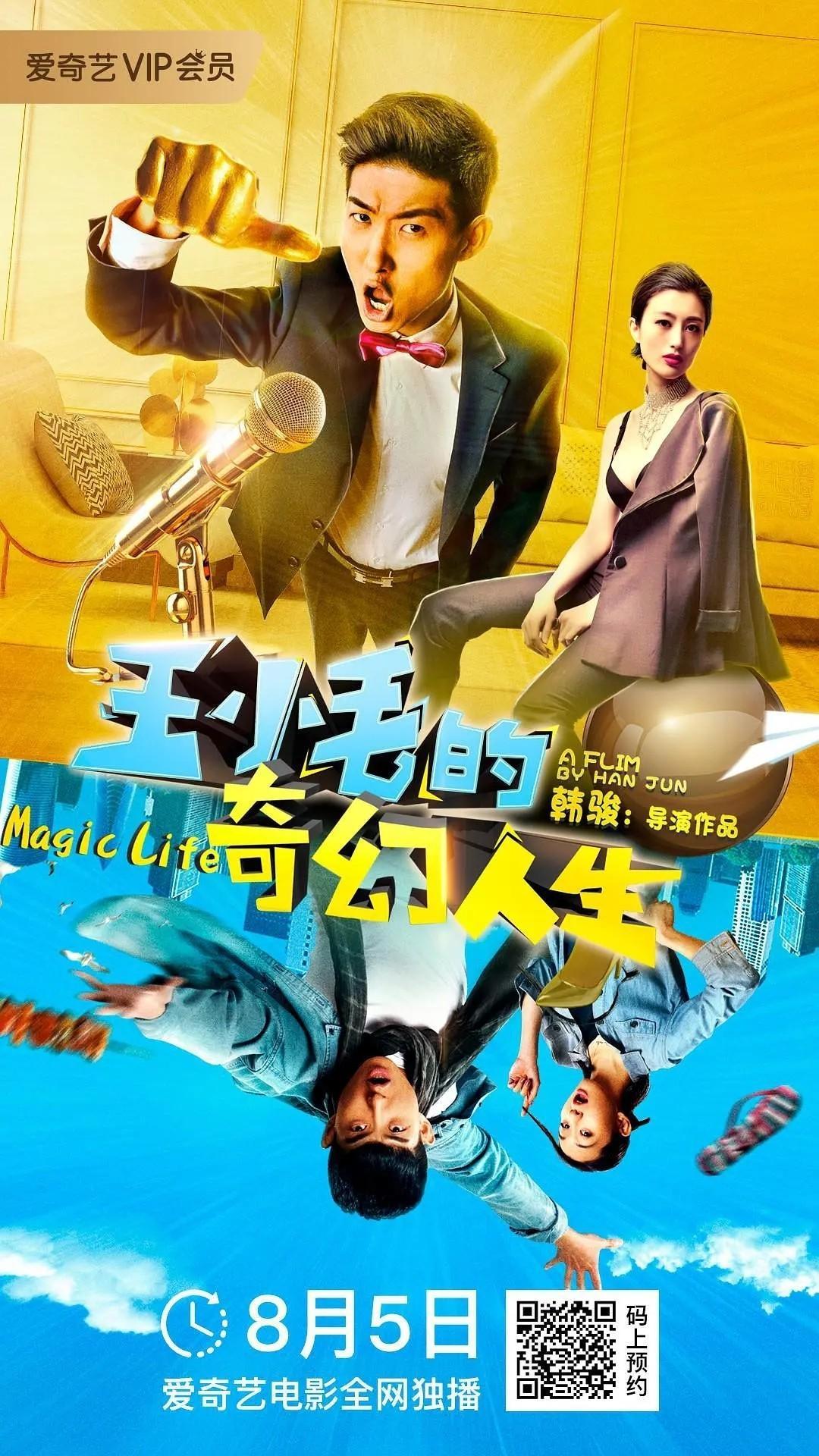 王小毛的奇幻人生海报
