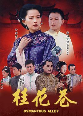 桂花巷海报