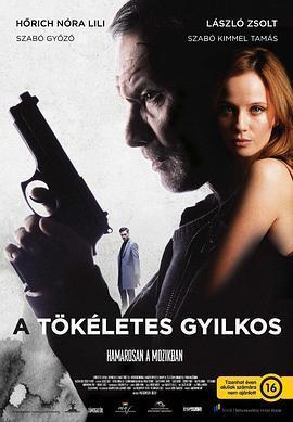 正义狙击 / 完美的杀手海报