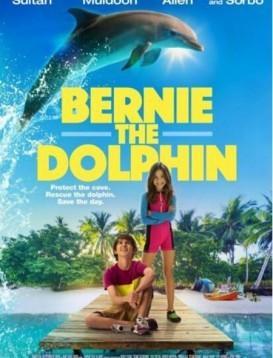 海豚伯尼/伯尼小海豚海报