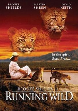 非洲猎豹海报