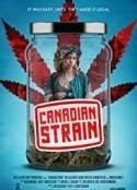 加拿大麻烦海报