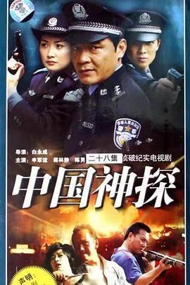 中国神探/刑案解密海报