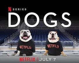 爱犬情深 第二季海报