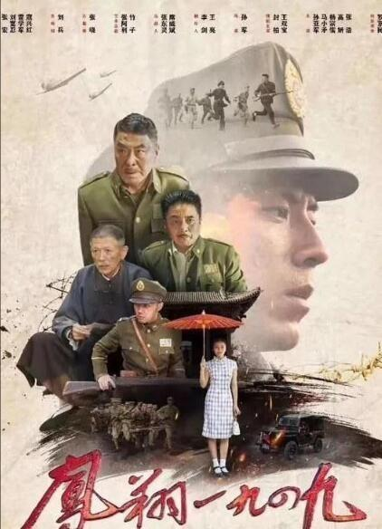 凤翔1949海报