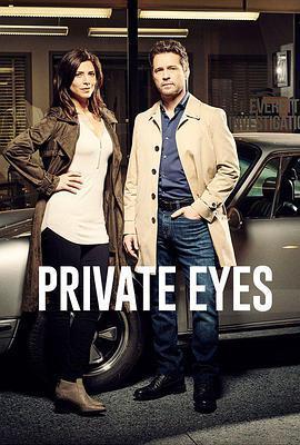 私家侦探 第二季海报