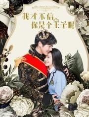 我才不信你是个王子呢海报