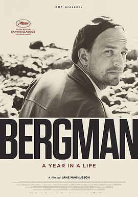 伯格曼:人生中的那一年海报