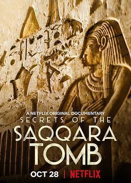 塞加拉陵墓揭秘海报
