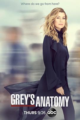 实习医生格蕾 第十六季海报