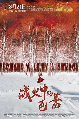 战火中的芭蕾 电影海报