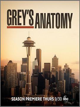 实习医生格蕾 第十八季海报