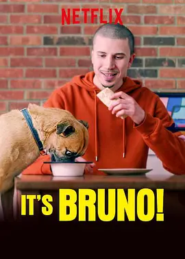 布鲁诺驾到!海报