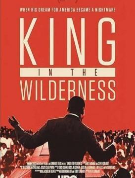 荒野中的国王海报