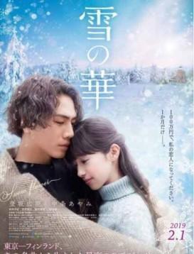 雪之华/雪之花海报
