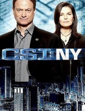 犯罪现场调查:纽约第七季海报