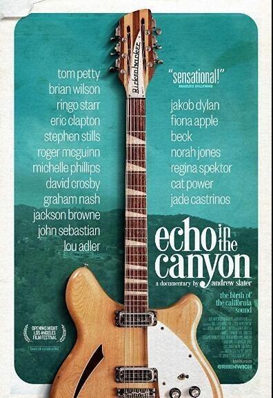 峡谷回音海报