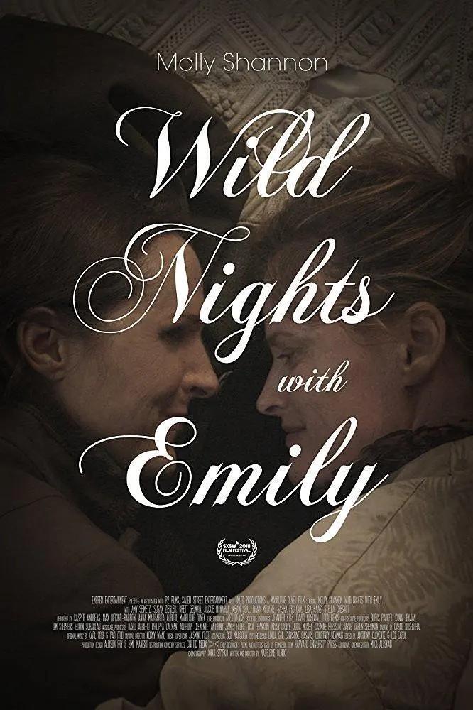 与艾米丽的疯狂夜晚海报