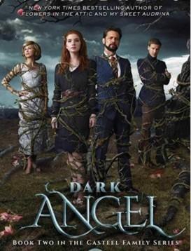 暗黑天使海报