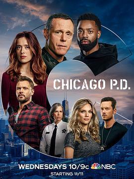 芝加哥警署 第八季海报