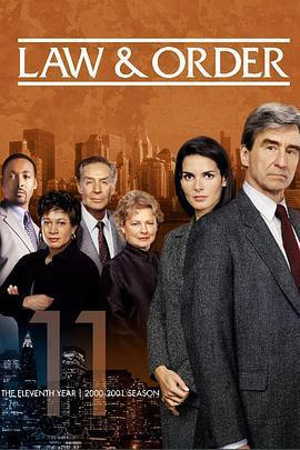 法律与秩序 第十一季海报