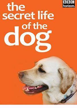 地平线系列:狗狗秘闻海报