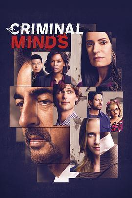 犯罪心理 第十五季海报