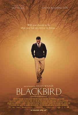 黑鸟 电影海报