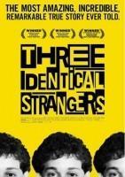 孪生陌生人海报