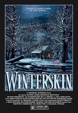 冬日肌肤海报