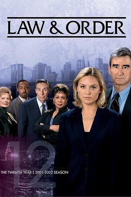 法律与秩序 第十二季海报