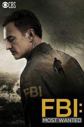 联邦调查局:通缉要犯 第一季海报