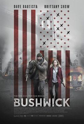 布希维克 电影海报
