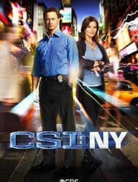犯罪现场调查:纽约第八季海报
