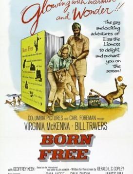 生来自由  电影海报