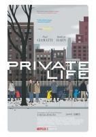 私人生活/非孕私生活海报