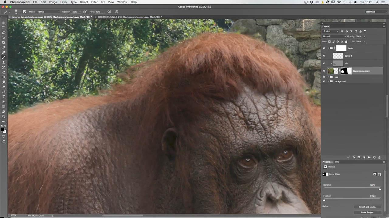 Jungle landscapes and animals FULL tutorial by Adrian Sommeling
