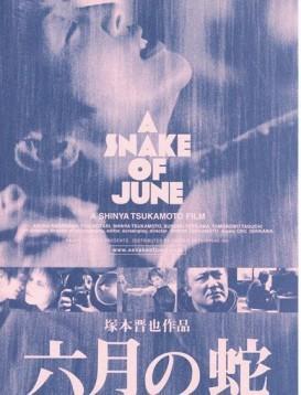 六月之蛇海报