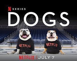 爱犬情深 第二季2020