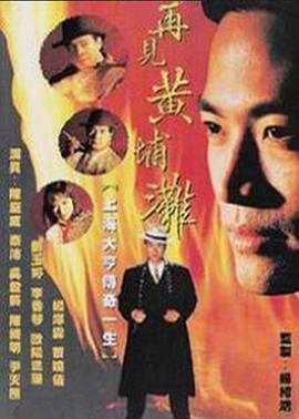 再见黄埔滩2/中国教父II再起风云海报
