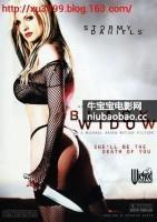 轻佻寡妇/轻佻黑寡妇海报