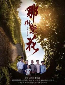 那树繁花海报